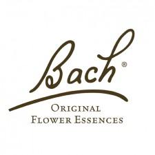 Ainsworth Bach