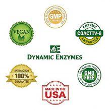 Dynamic Enyzmes Serra Activ για Ενίσχυση του Ανοσοποιητικού και τον Καθαρισμό των Ιγμορειών 60caps